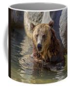 Grizzly Bear - San Diego Zoo Coffee Mug