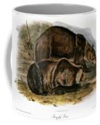 Grizzly Bear (ursus Ferox) Coffee Mug