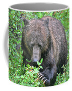 Grizzly Claws Coffee Mug