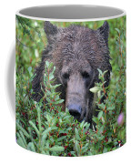 Grizzly In The Berry Bushes Coffee Mug