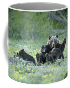 Grizzly Romp - Grand Teton Coffee Mug by Sandra Bronstein
