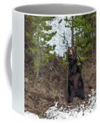 Grizzly Shaking A Tree Coffee Mug
