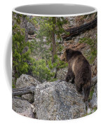 Grizzly Sow In Yellowstone Park Coffee Mug