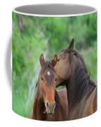 Grooming Horses Coffee Mug