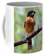 Grosbeak 062314a Coffee Mug