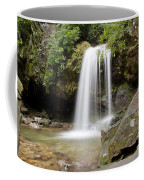 Grotto Falls Great Smoky Mountains Coffee Mug by Jemmy Archer