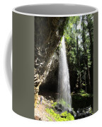 Grotto Falls Perspective Coffee Mug