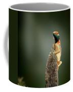 Ground Agama Sunbathing Coffee Mug