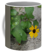Grounded Sunflower Coffee Mug