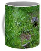 Groundhog Home Defense 2017 28 Coffee Mug
