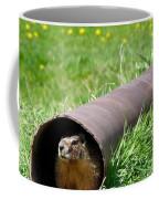 Groundhog In A Pipe Coffee Mug