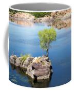 Grow Where You're Planted Coffee Mug