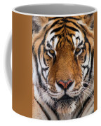 Hunter's Displeasure Coffee Mug