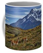 Guanacos In Patagonia Coffee Mug