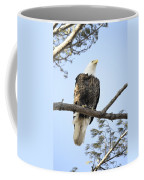 Guardian Perch Coffee Mug