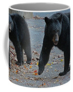 Guarding Her Cubs Coffee Mug