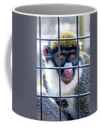 Guenon Monkey Coffee Mug