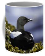 Guillemot A Miroir Coffee Mug