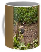 Guinea Fowl 1 Coffee Mug