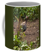 Guineafowl 2 Coffee Mug