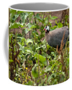 Guineafowl 3 Coffee Mug