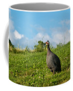 Guineafowl Searching Coffee Mug