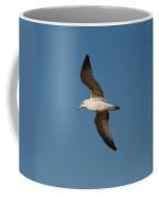 Gull As Seen From The Beach Coffee Mug