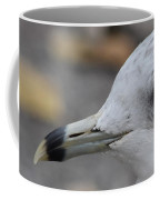 Gull Eye Coffee Mug