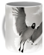 Gull In Flight 2 Coffee Mug