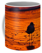 Gull Caught At Sunrise Coffee Mug