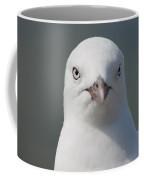 Gull Portrait Coffee Mug