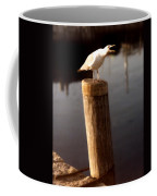 Gull Warning Coffee Mug