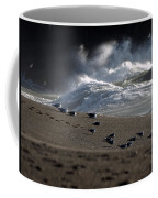 Gulls At Goat Rock Sundown Coffee Mug