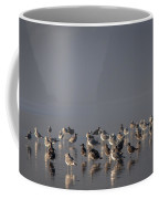 Gulls On A Foggy Beach Coffee Mug