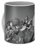 Gulls On Guard - Pt Mugu, California Coffee Mug by Samuel M Purvis III