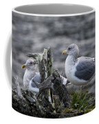 Gulls Coffee Mug