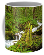 Gushing Through Ferns And Forest Coffee Mug
