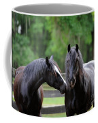 Gypsy Vanner Mares Coffee Mug