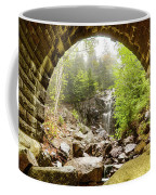 Hadlock Falls Under Carriage Road Arch Coffee Mug
