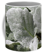 Hairy Leaf Coffee Mug