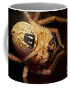Hairy Spider Coffee Mug