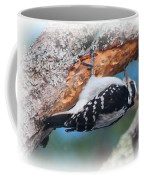 Hairy Woodpecker 2 Coffee Mug