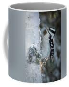 Hairy Woodpecker Female Coffee Mug