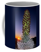 Haleakala National Park Silversword Sunrise Maui Hawaii Coffee Mug