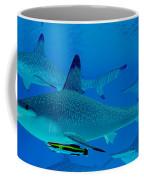 Hammerhead Sharks Coffee Mug