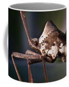 Handsome Bug Coffee Mug