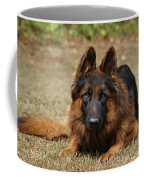 Handsome Fella Coffee Mug