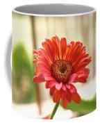 Handsome Fellow Coffee Mug