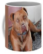 Handsome Red Nose Pit Jak Coffee Mug