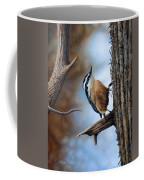 Hangin Out - Nuthatch Coffee Mug